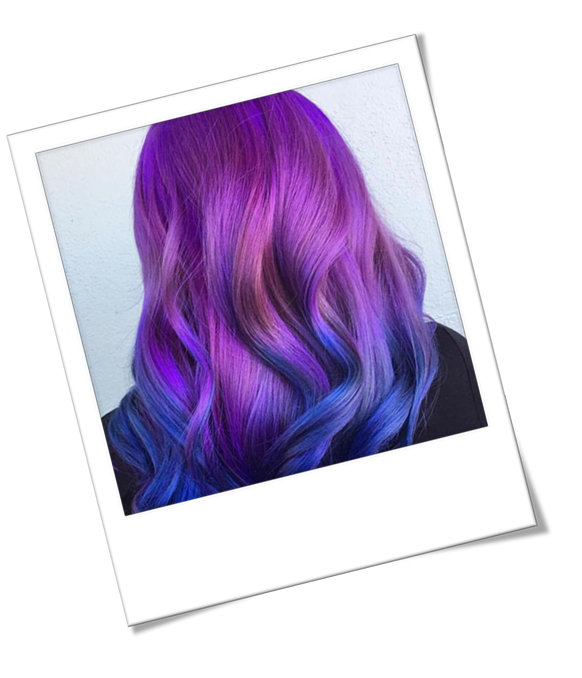 purple_3